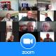 DOB Zoom contact
